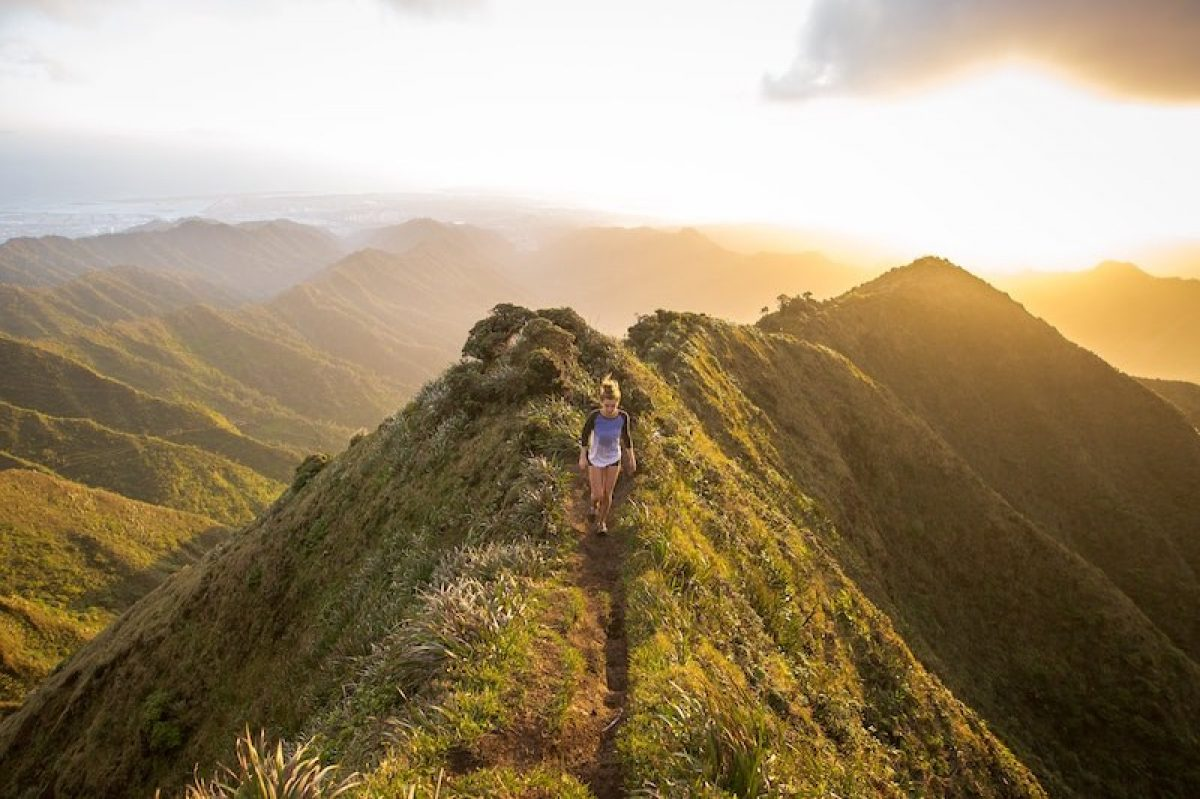 How To Differentiate Green Tourism, Ecotourism, And Sustainable Tourism