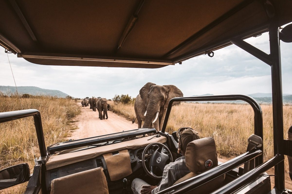 Tips on starting a profitable tour operator business